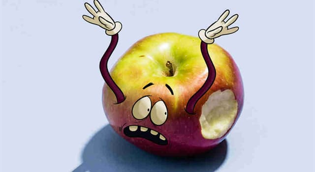"""Naturaleza Pregunta Trivia: ¿Cuál de estos alimentos era conocido como """"manzana loca"""" porque se creía que causaba demencia?"""