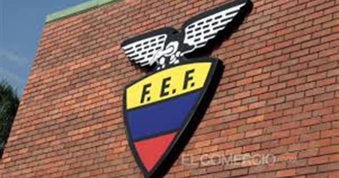 Deporte Pregunta Trivia: ¿Cuántos equipos participan en el campeonato ecuatoriano de fútbol, serie A?