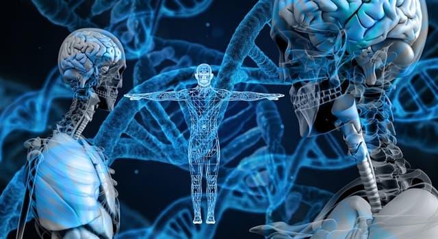 Сiencia Pregunta Trivia: ¿En biología, qué palabra describe el cambio genético que puede ser hereditario?