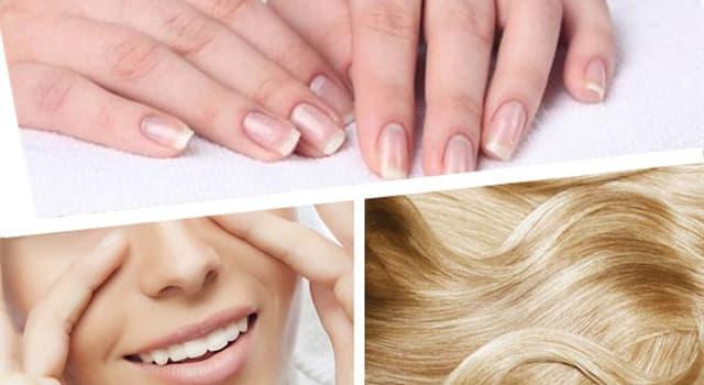 Сiencia Pregunta Trivia: ¿A qué sistema del cuerpo humano pertenecen la piel, el cabello y las uñas?