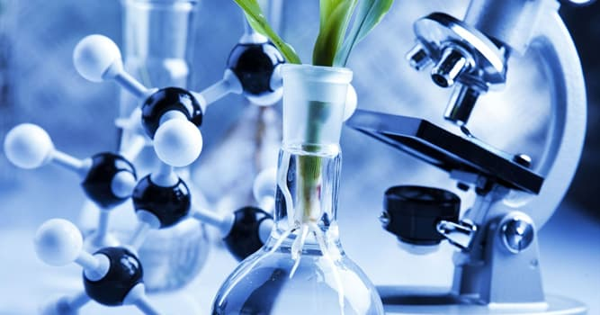 Science Trivia Question: The release of which steroid hormone is increased in response to stress?