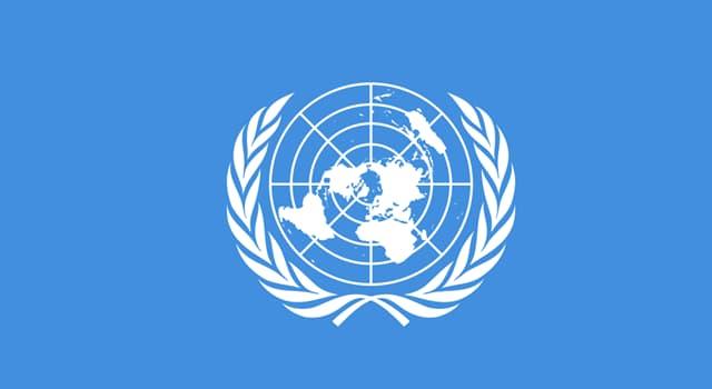 Sociedad Pregunta Trivia: ¿Cuál es el principal objetivo de la FAO, el organismo especializado de la ONU?