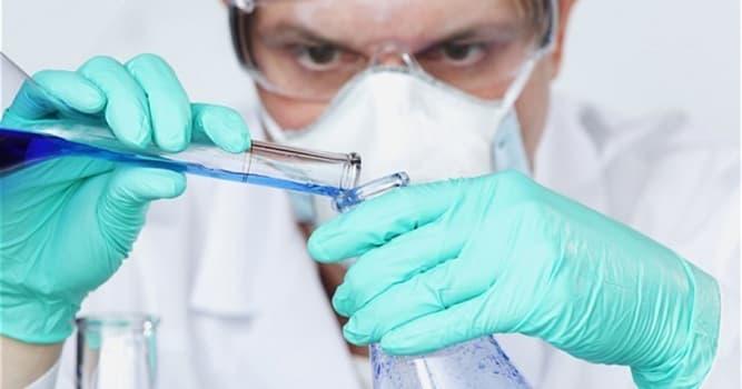 Wissenschaft Wissensfrage: Womit befasst sich die Mykologie?