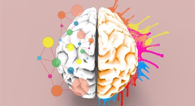 Сiencia Pregunta Trivia: ¿Qué es el pensamiento lateral?
