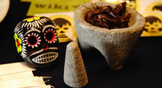 Cultura Pregunta Trivia: ¿Con qué nombre se denominaba al mortero tradicional de mesoamérica ampliamente utilizado en México?