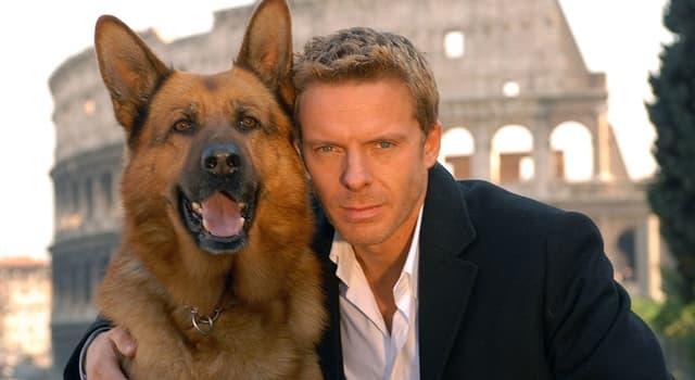 Películas y TV Pregunta Trivia: ¿Cómo se llamaba la serie de TV austríaca de comedia-drama que fue emitida desde 1994 hasta 2004?