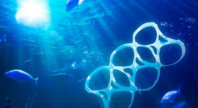Сiencia Pregunta Trivia: ¿Qué han desarrollado científicos de la Universidad de Portsmouth para acabar con los plásticos PET?