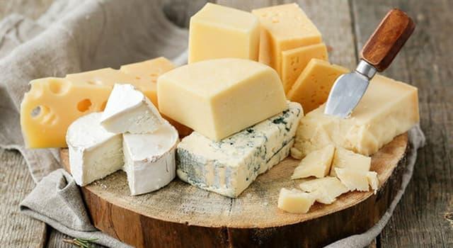"""Cultura Pregunta Trivia: ¿Qué ingrediente hace especial al queso llamado """"Casu Marzu"""", un manjar en la isla de Cerdeña?"""