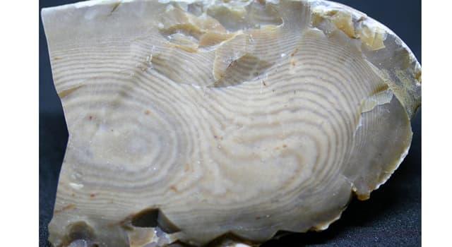 Naturaleza Pregunta Trivia: ¿Qué tipo de material es el sílex?