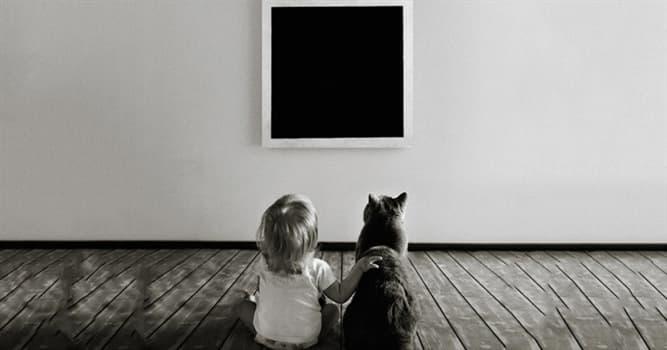 """Kultur Wissensfrage: Wer ist der Maler des Gemäldes """"Das Schwarze Quadrat""""?"""