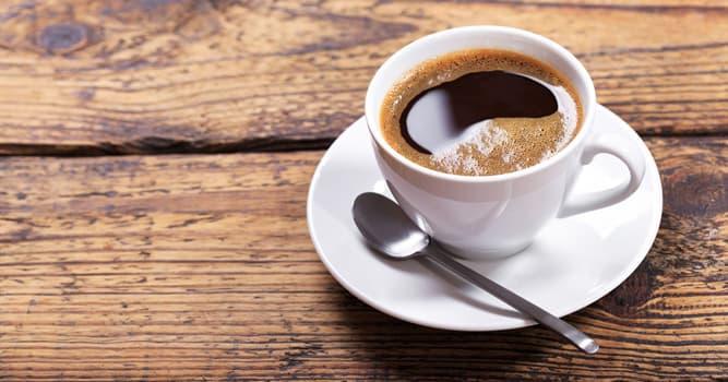 Gesellschaft Wissensfrage: Wie bekommt man die teuersten Kaffeebohnen der Welt?