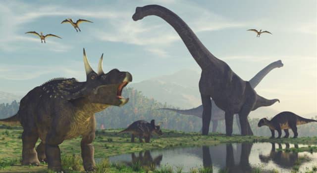 Historia Pregunta Trivia: ¿A qué debe su nombre el Periodo Jurásico?