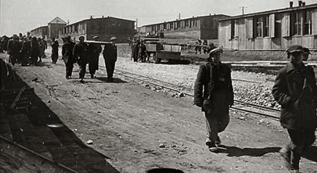 Historia Pregunta Trivia: ¿De qué complejo formó parte el campo de concentración Birkenau durante la Segunda Guerra Mundial?