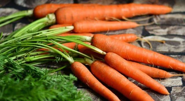 Naturaleza Pregunta Trivia: ¿De qué continente es fundamentalmente oriunda la daucus carota?