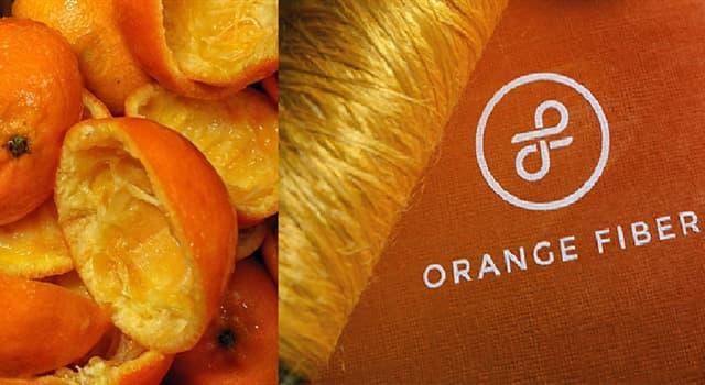 """Sociedad Pregunta Trivia: ¿En qué país funciona la fábrica llamada """"Orange Fiber"""" que desarrolla fibras con cáscaras de naranja?"""