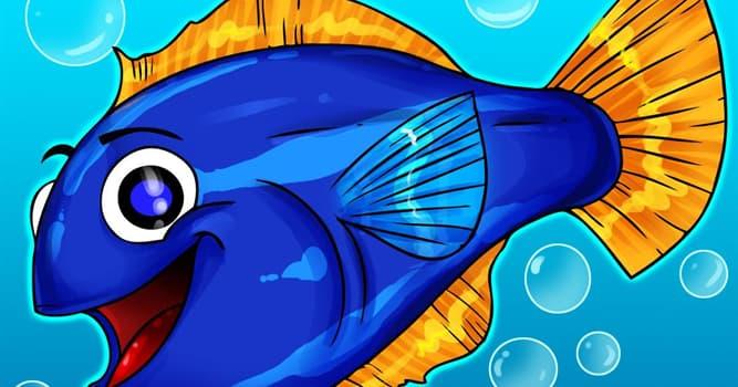 """Naturaleza Pregunta Trivia: ¿Cuántos ojos tienen los """"peces de cuatro ojos""""?"""