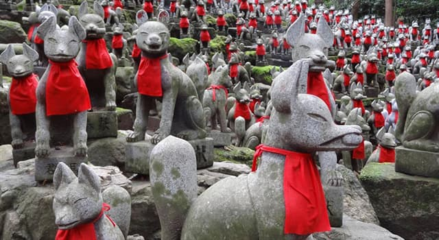 Cultura Pregunta Trivia: ¿Qué es el kitsune?