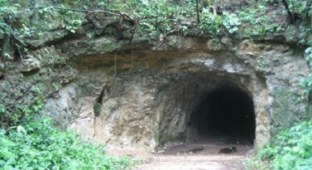 Sociedad Pregunta Trivia: ¿Quién construyó un túnel en el bosque de Ponar, Lituania?