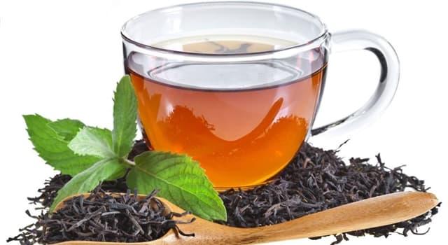 Cultura Pregunta Trivia: ¿Qué aceite aromático le da al té Earl Gray su sabor único?