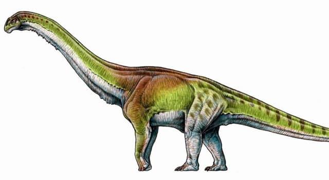 Сiencia Pregunta Trivia: ¿En qué país se encontraron los restos de los dinosaurios de mayor tamaño?