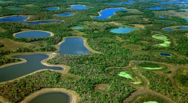 Geografía Pregunta Trivia: ¿Dónde está el Gran Pantanal?