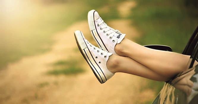 Sociedad Pregunta Trivia: ¿Cómo se le dice a una persona que colecciona zapatillas deportivas?
