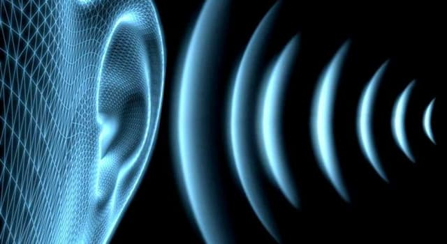 Cultura Pregunta Trivia: ¿Cuántos parámetros fundamentales tiene el sonido?