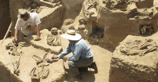 Películas y TV Pregunta Trivia: ¿Cuál de estos personajes era profesor de arqueología?