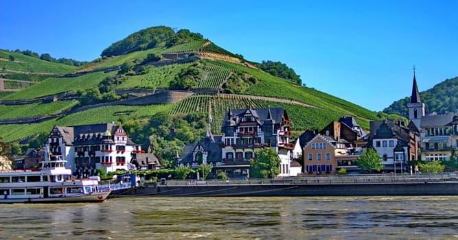 Natur Wissensfrage: Für welche wichtige Kulturpflanze ist das Rheintal in Deutschland bekannt?